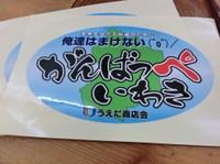 Iwakai_045
